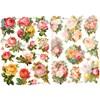 Kiiltokuvat, ruusut, 16,5x23,5 cm, 2 ark, 1 pkk