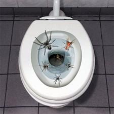 Dekorasjon Toalettedderkopper