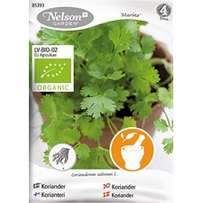 Koriander, Marino, Organic
