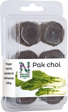 Pak Choi Hydroponisk odling - Lätt att odla