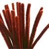 Piperensere, tykkelse 9 mm, L: 30 cm, 25 stk., gml. rød
