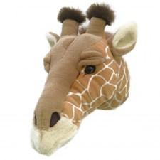 Djurhuvud Giraff, Brigbys