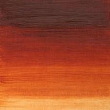Winsor & Newton Winton Oljefärg 37 ml 074 Burnt Sienna