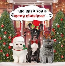 Julkort dubbelt 3D kvadrat Hund och katter