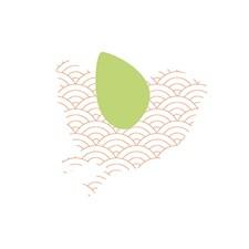 Applikasjon Fugl, Flerfarged, Stor ca 11/11 cm
