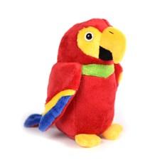 Captains parrot