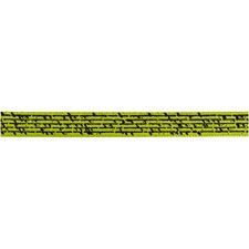 Sidenband Med Tryck 10 mm x 8 m Lime