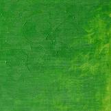 Winsor & Newton Winton Oljefärg 200 ml 483 Permanent Green Light