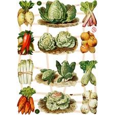 Glansbilder, ark 16,5x23,5 cm, grønnsaker, 3ark