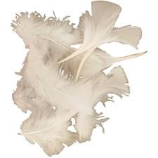 Dun, str. 7-8 cm, 500 g, hvit