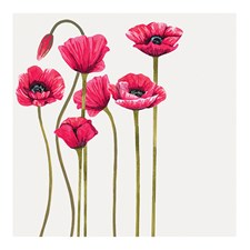 Kort med Kuvert Dawn Poppies Black Olive