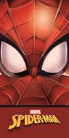 Badlakan SM200, 70x140, Spiderman
