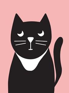 Katt Poster 21x30 cm