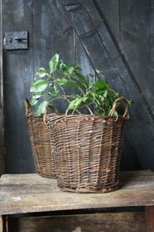 Planteringskorg 26x20