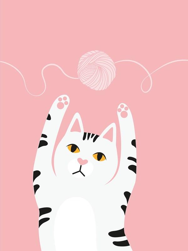 Katt Poster Garnnystan 21x30 cm