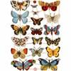 Glansbilder, ark 16,5x23,5 cm, , sommerfugler, 3ark