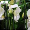 Orkidéklämma, Mörkgrön 20st