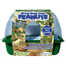 Grow Your Own Peanuts